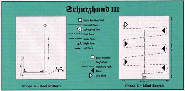 Schutzhund obedience and protection patterns